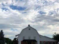 IN-Grown-takeover-barn-morning