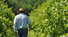 Welcome to the <br/>Indiana Uplands Wine Trail